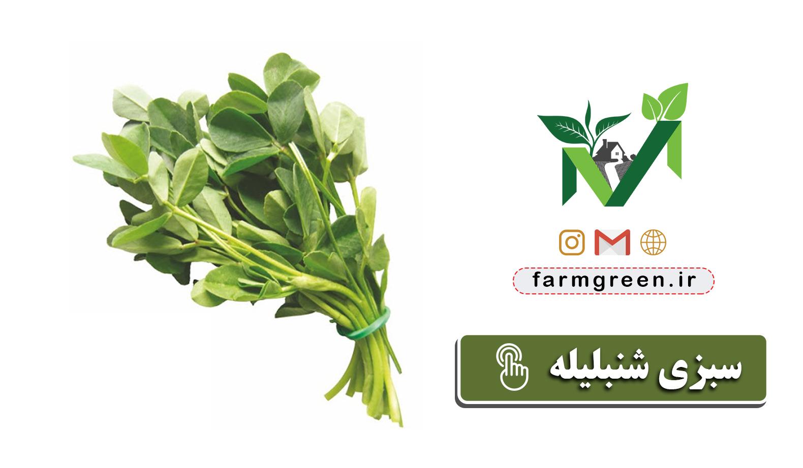 تولید و پخش سبزیجات تازه خانگی